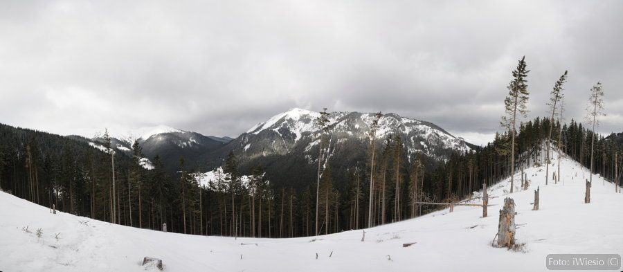 dsc_0081-panorama