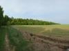 dsc_3310-panorama