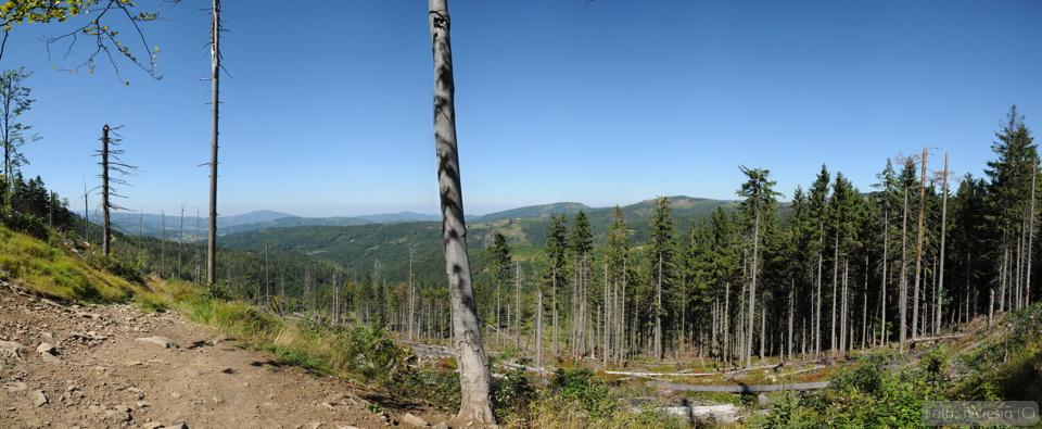 dsc_8274-panorama