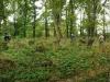 dsc_8846-panorama