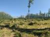 dsc_0003-panorama
