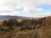 dsc_2052-panorama