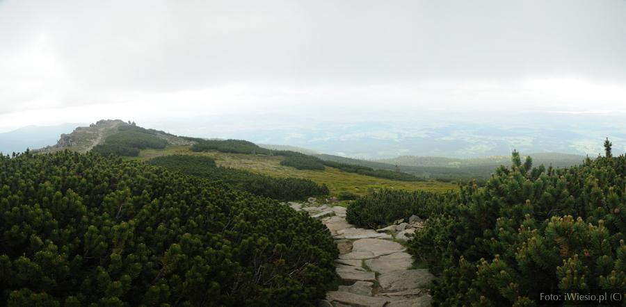 DSC_8082 Panorama
